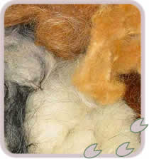 Coloured Fleece